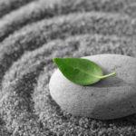Спокойствие дзен и как его сохранить