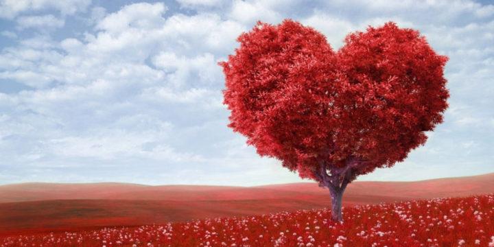 10 шагов на пути к преодолению любовной зависимости